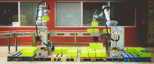 Demostración de apliación de robótica colaborativa de paletizado automatizado CADE Cobots