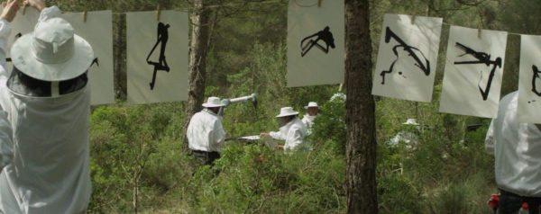 Recogida de firma de abejas con cobotica e inteligencia artificial
